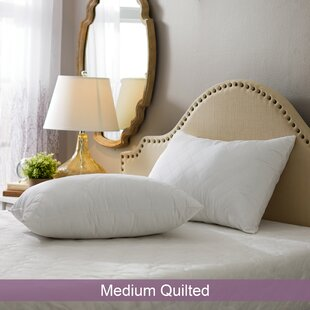 Wayfair Basics™ Wayfair Basics Medium Quilted Pillow (Set of 2)