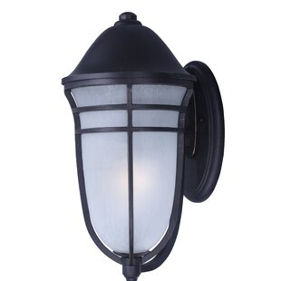 Darby Home Co Sundee 1-Light Outdoor Sconce