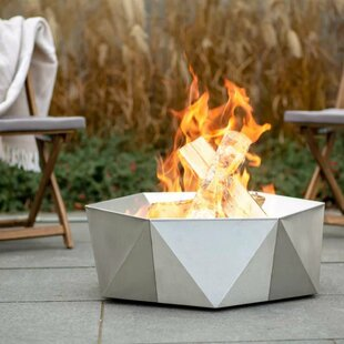 Soucy Stainless Steel Charcoal/Wood Burning Fire Pit By Sol 72 Outdoor