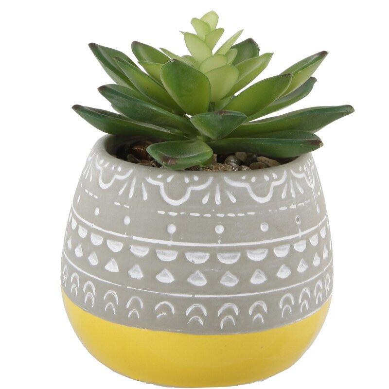 2 Artificial Tone Floral Pattern Desktop Succulent Plant In Pot Reviews Allmodern