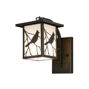 Reviews Hyde Park Song Bird 1-Light Outdoor Wall Lantern By Meyda Tiffany