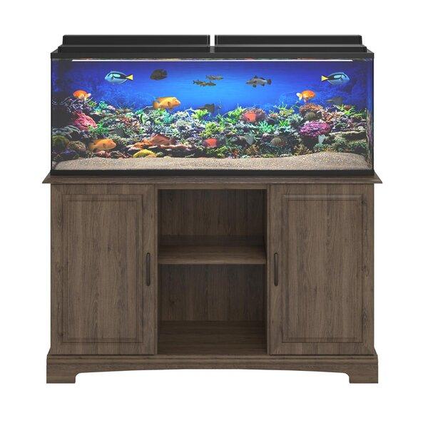 Fish Tanks Aquariums Youll Love Wayfair - 25 gallon aqua coffee table aquarium tank