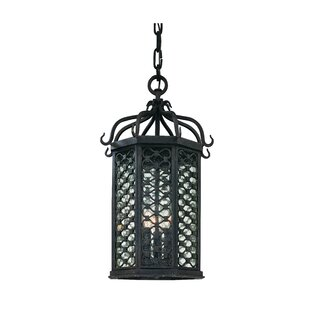 Darby Home Co Hinckley 2-Light Outdoor Hanging Lantern