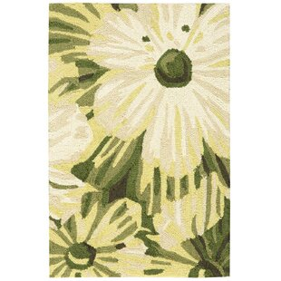 York Hand-Hooked Herb Area Rug by Charlton Home