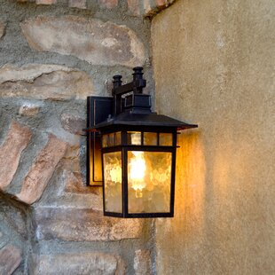 Sherly 1-Light Outdoor Wall Lantern