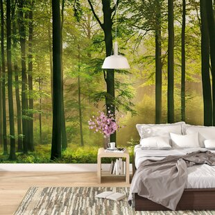 Forest Mural Wallpaper Wayfair