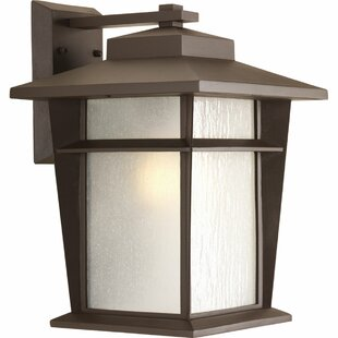 Cathrine Outdoor Wall Lantern