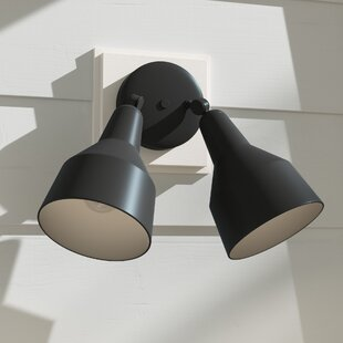 Lowell 2 Outdoor Security Flood/Spot Light by Charlton Home