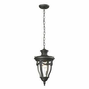 Demetrius 1-Light Outdoor Hanging Lantern