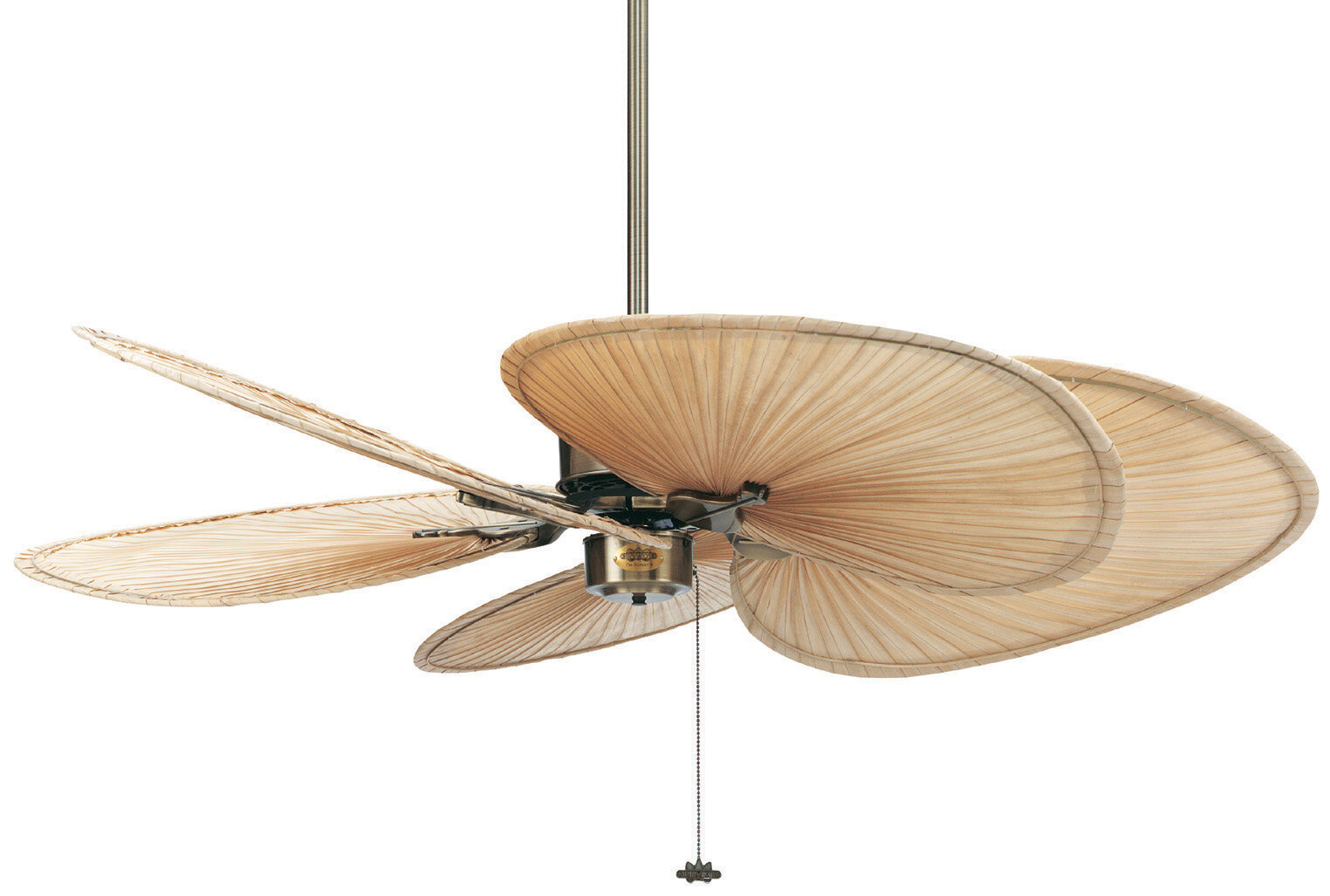 Fanimation 52 islander 5 blade ceiling fan reviews wayfair aloadofball Image collections