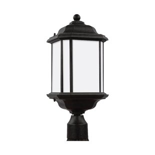 Best Reviews Burtt Outdoor 1-Light Lantern Head By Darby Home Co