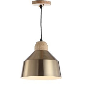 George Oliver Bowe 1-Light Dome Pendant