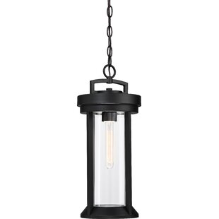 Mauch 1-Light Hanging Lantern