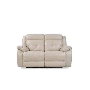 Purchase Oshawa Reclining Loveseat by Red Barrel Studio Reviews (2019) & Buyer's Guide