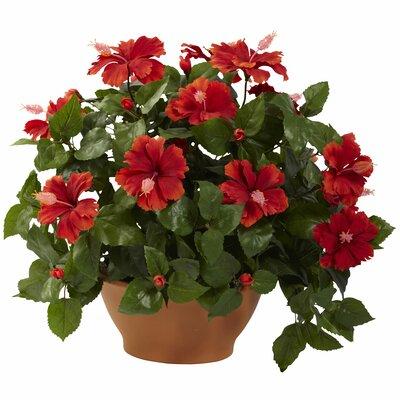Alcott Hill Hibiscus Desk Top Plant in Planter
