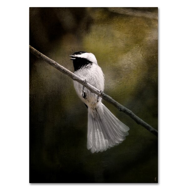 Trademark Art A Song In Your Heart Chickadee Graphic Art Print On Wrapped Canvas Wayfair