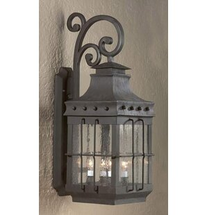 Buy clear Theodore 4-Light Outdoor Wall Lantern By Darby Home Co