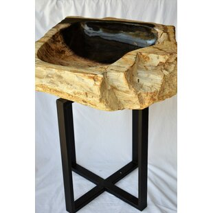 philmore Petrified Wood 20