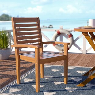 Rivas Patio Dining Chair (Set of 2)