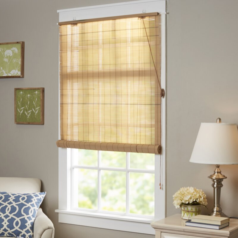 Wayfair Basics™ Wayfair Basics Semi-Sheer Roller Shade & Reviews ...