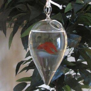 Modern Home Hanging Glass Aquarium Tank