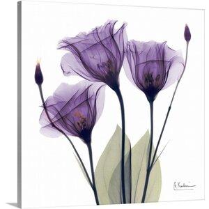 Purple Flower Trio by Albert Koetsier Photographic Print on Wrapped Canvas