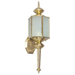Astoria Grand Malakai 1-Light Outdoor Wall Lantern