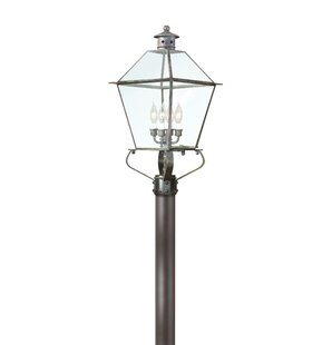 Theodore 4-Light Incandescent Lantern Head by Darby Home Co