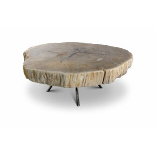 Ordaz Coffee Table