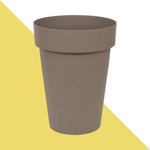Angela Plastic Plant Pot By Hashtag Home