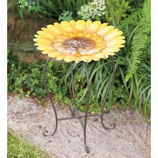 Bexhill Bird Bath By Happy Larry