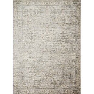 Donald Gray Area Rug by Bungalow Rose