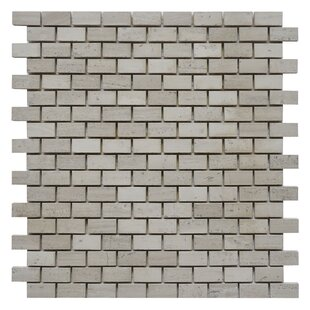 """Brick 0.62"""" x 1.25"""" Marble Mosaic Tile in White Oak by"""