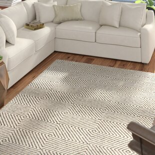 Best Deals Marcelo Hand Woven Ivory Area Rug By Mercury Row