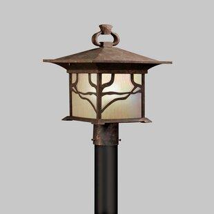 Morris Outdoor 1-Light Lantern Head By Kichler