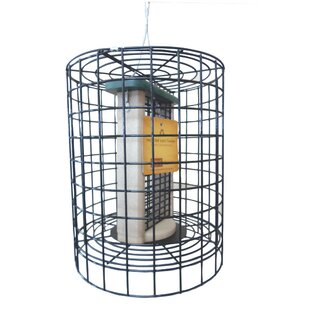 Birds Choice Choice Clever Clean Tube Bird Feeder with Wire Cage