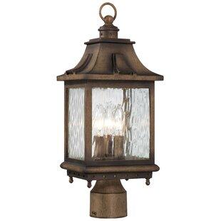 Darby Home Co Danville Outdoor 3-Light Lantern Head