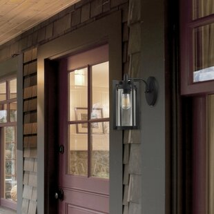 Ivy Bronx Carlton 1-Light Outdoor Wall Lantern