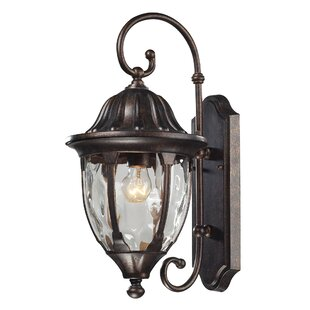 Compare prices Amy 1-Light Outdoor Wall Lantern By Fleur De Lis Living