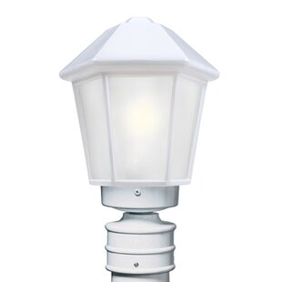 Donnie Contemporary 1-Light Frosted Glass Lantern Head by Latitude Run