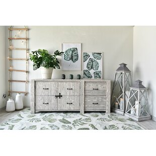 White Springs 2 Drawer Combi Chest By Beachcrest Home