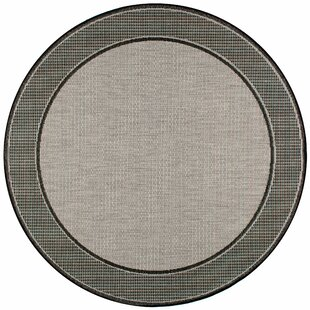 Mcelfresh Gray Indoor/Outdoor Rug