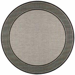 Mcelfresh Gray Indoor/Outdoor Rug