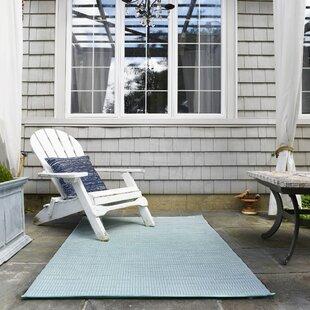 Reba Mint Indoor/Outdoor Area Rug