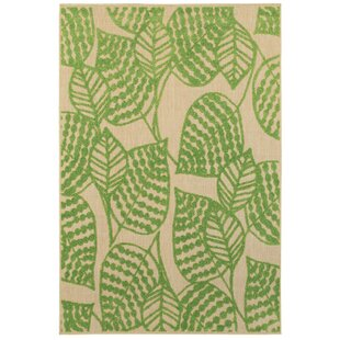 Ledyard Green Indoor Outdoor Area Rug