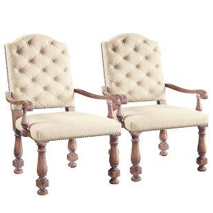 Anahi Arm Chair (Set of 2) by Ophelia & Co.