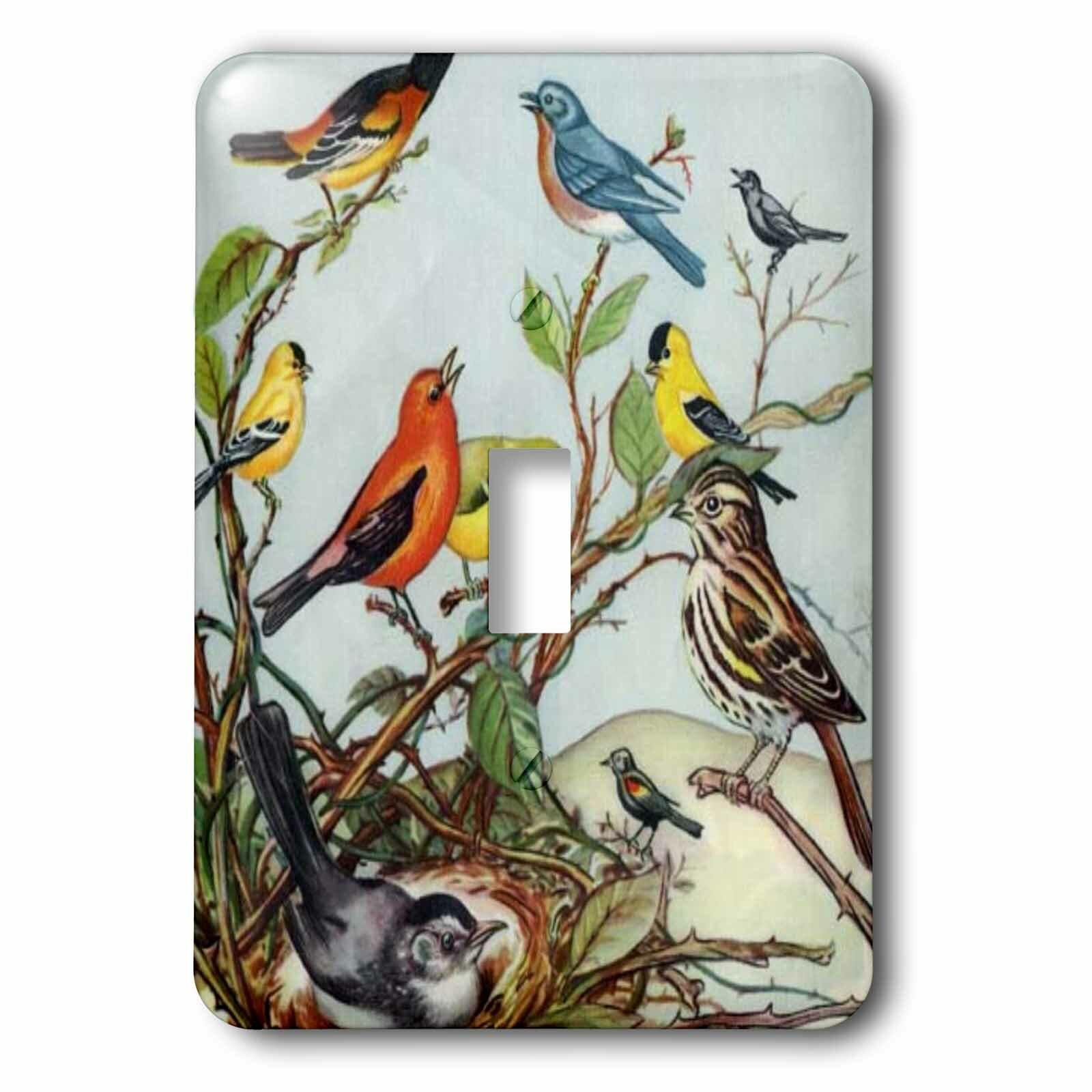 3drose Ten Birds Cartoon 1 Gang Toggle Light Switch Wall Plate Wayfair