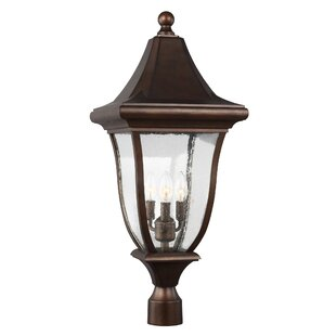 Darby Home Co Haubstadt 3-Light Lantern Head