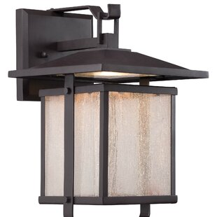 Brayden Studio Olivarez 1-Light Outdoor Wall Lantern