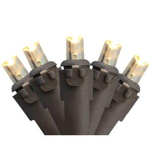 The Holiday Aisle Wide Angle Christmas 100 Lights String Lighting with Lamp Lock